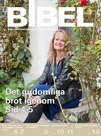 BIBEL_3_hemsida_framsida